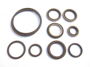 Beisan double Vanos repair/seal kit BMW S54