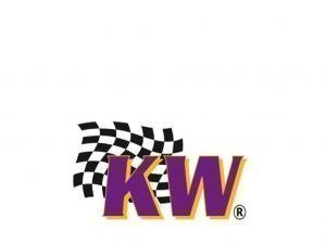 KW lowering springs