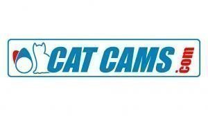 Cat Cams, Sivu 1