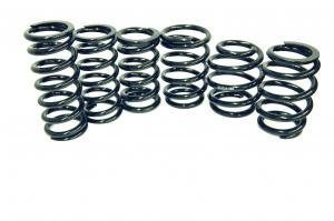 Coilover main springs, D2